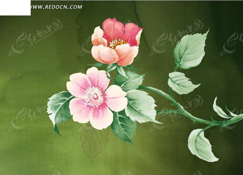 绿色背景上的手绘花朵与绿叶图片