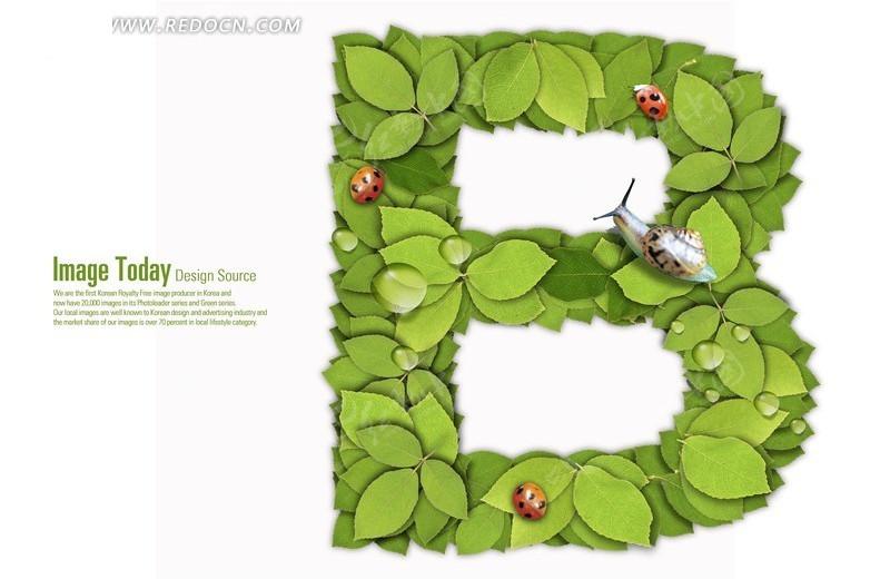 鲁女b_绿色树叶组成字母b