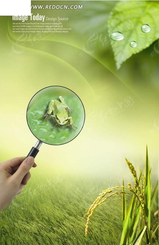 免费素材 psd素材 psd分层素材 风景 放大镜看青蛙