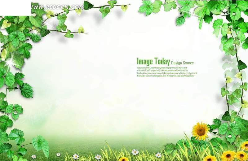 花儿叶子相册边框背景素材PSD免费下载 编号1216701 红动网图片