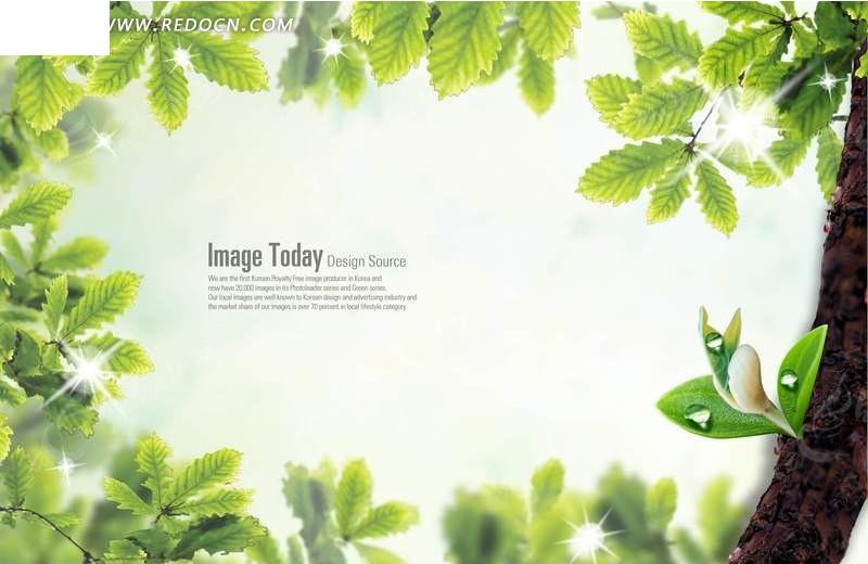 绿色叶子边框相册背景素材