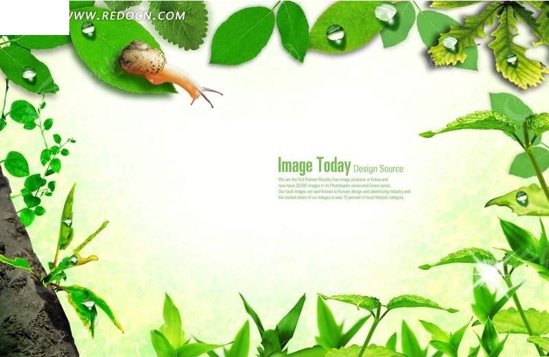 清新绿叶蜗牛背景素材