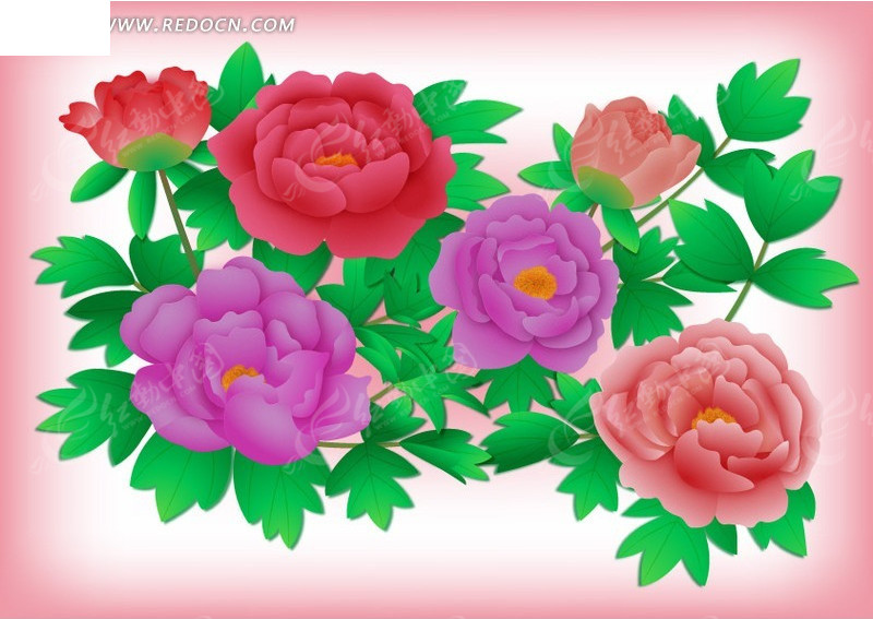 牡丹花叶子的简笔画;