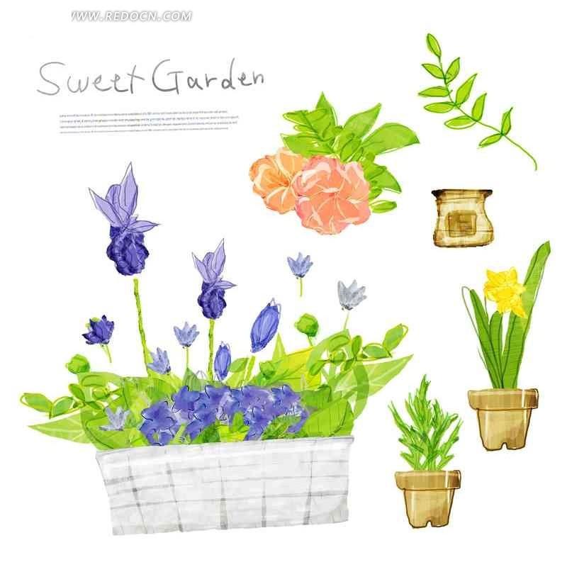 白色背景 植物素材 盆栽 绿色叶子 花朵 花卉 手绘插画稿件 英文字母