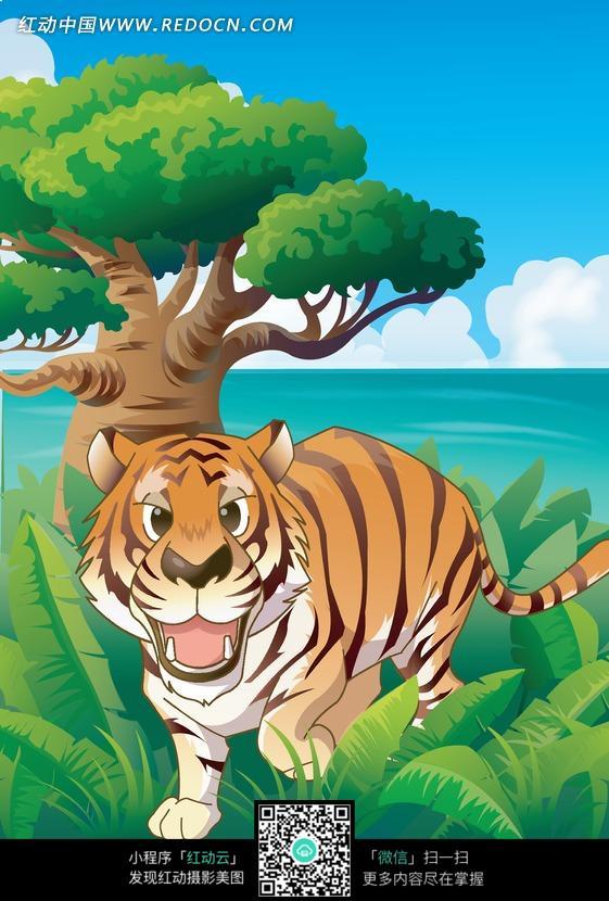 草丛里可爱的小老虎