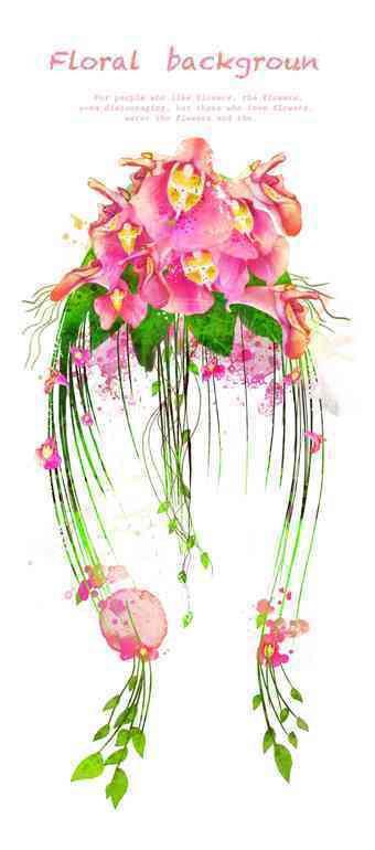 蝴蝶兰 手绘花卉 兰花 花藤 花纹花边 草藤 花束 花圈 草圈 草本植物