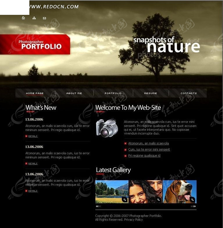 网站_欧美风格个人网站网页模板