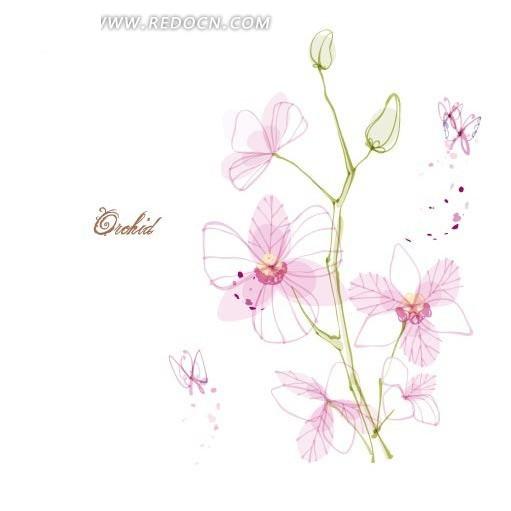 手绘线条藤蔓粉红花朵