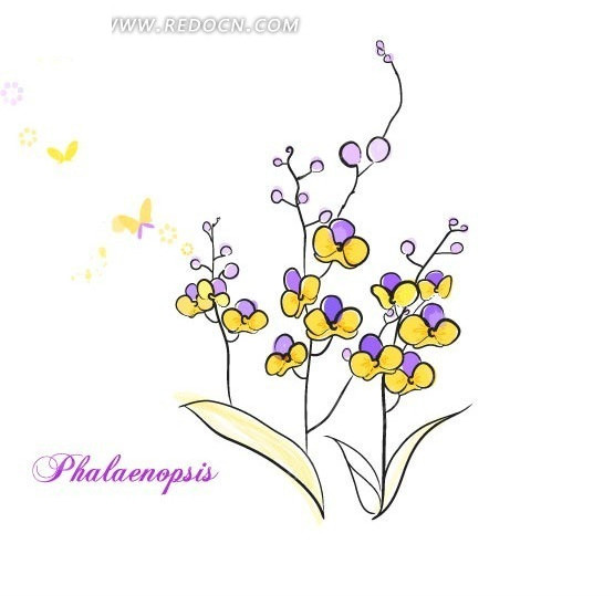 创意手绘花朵线稿上色插 创意花朵花瓣线稿插画 矢量彩色花朵线稿插画