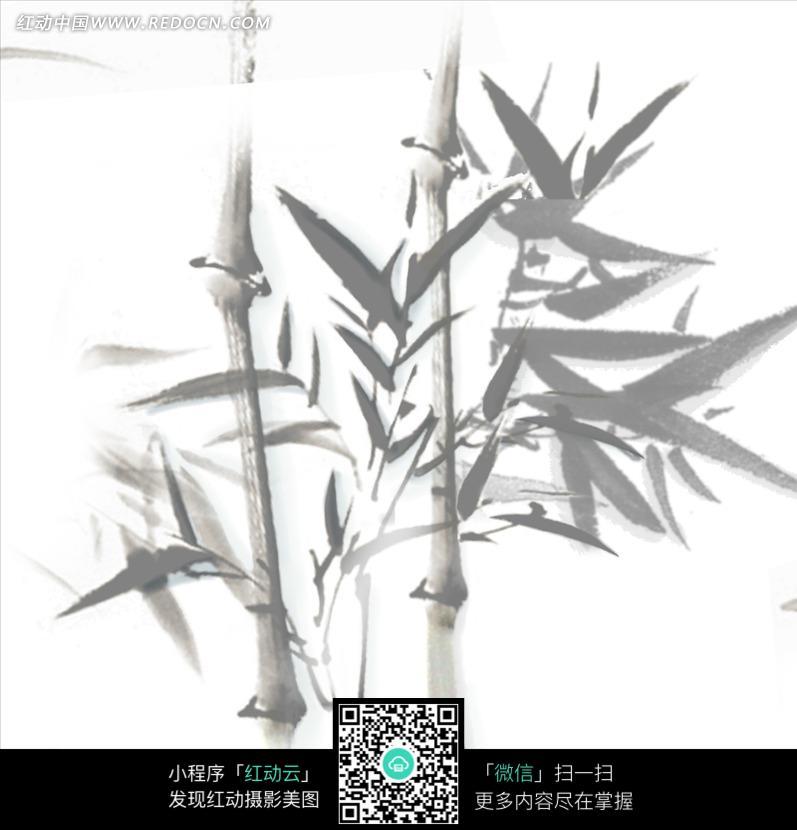 灰色竹子写意画图片图片