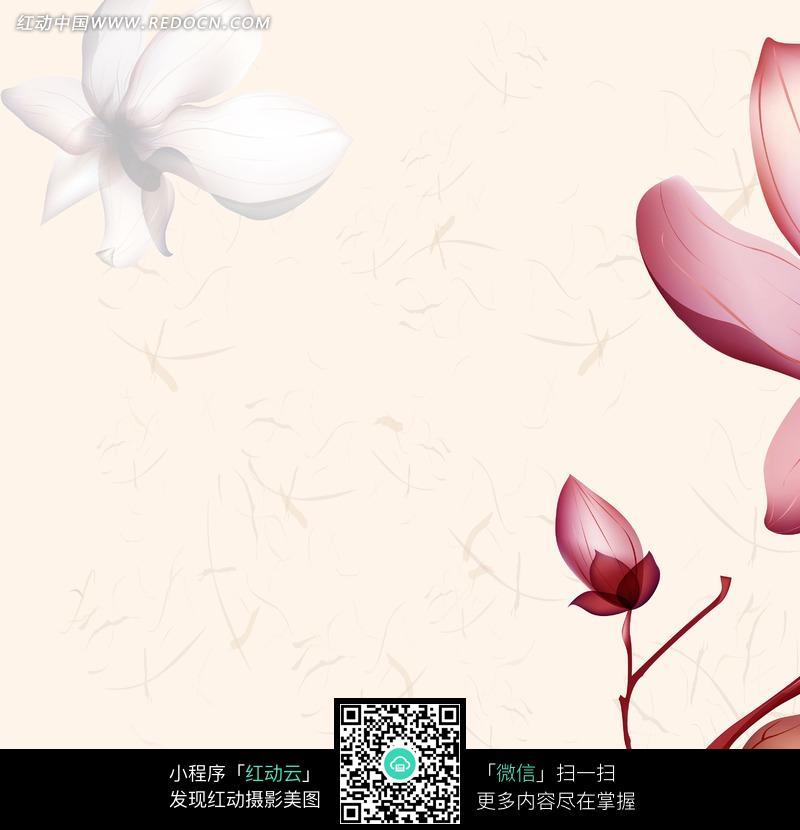 手绘莲花花影图片