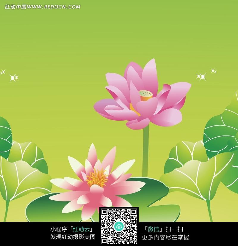 免费素材 图片素材 背景花边 底纹背景 手绘的荷花和睡莲