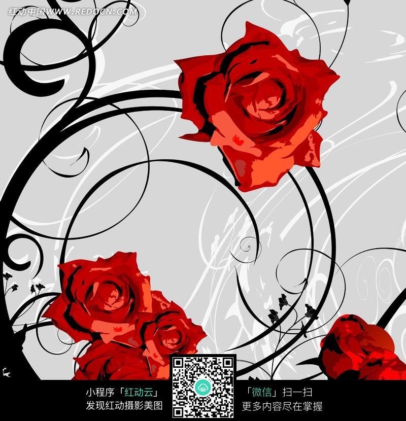 手绘藤蔓红玫瑰图片