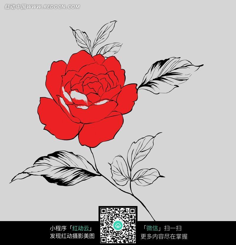 素描一支玫瑰花