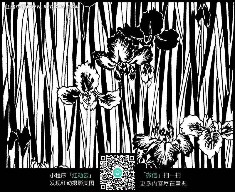 花朵和黑白线条背景图图片