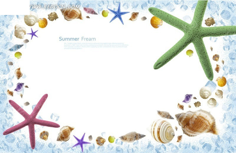 海螺海星清凉相框素材图片