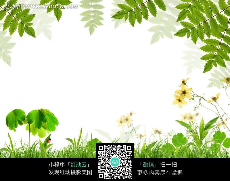 大自然的春天图片图片 风景图片 1263827