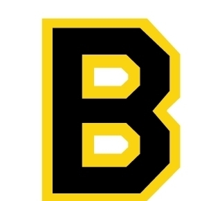 鲁女b_字母b标志设计矢量