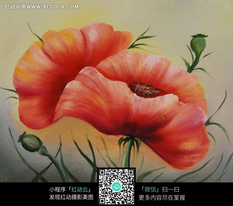 盛开的红色花朵油画图片免费下载 编号1366147 红动网图片