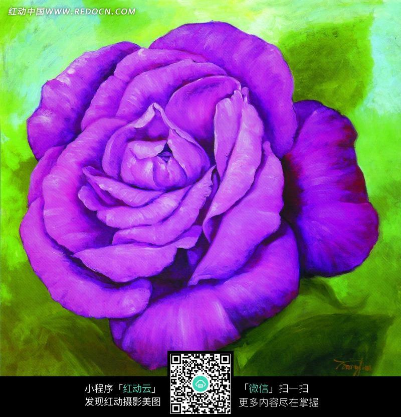 一朵紫色的玫瑰油画图片图片