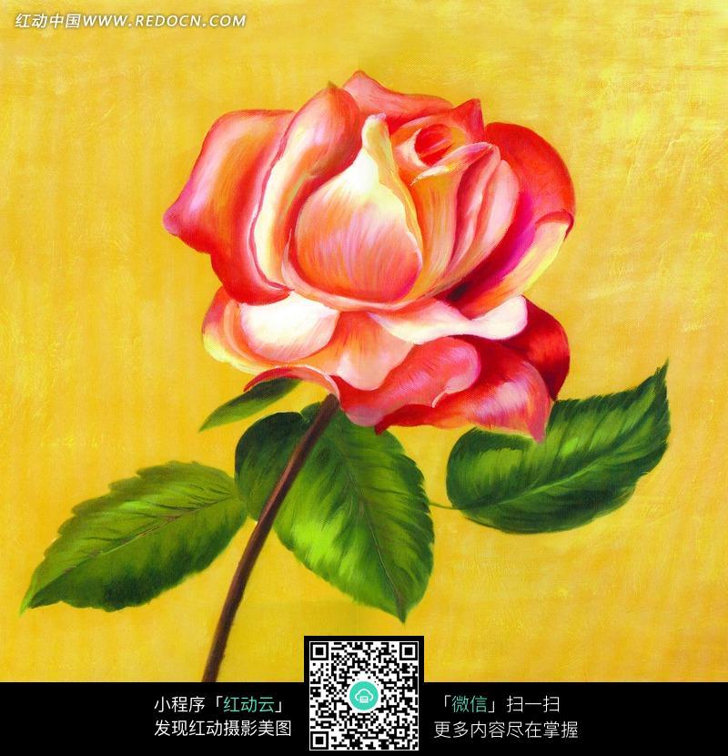油画盛开的一枝玫瑰花图片