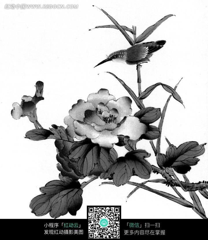 工笔画之盛开的花朵和树枝上的鸟