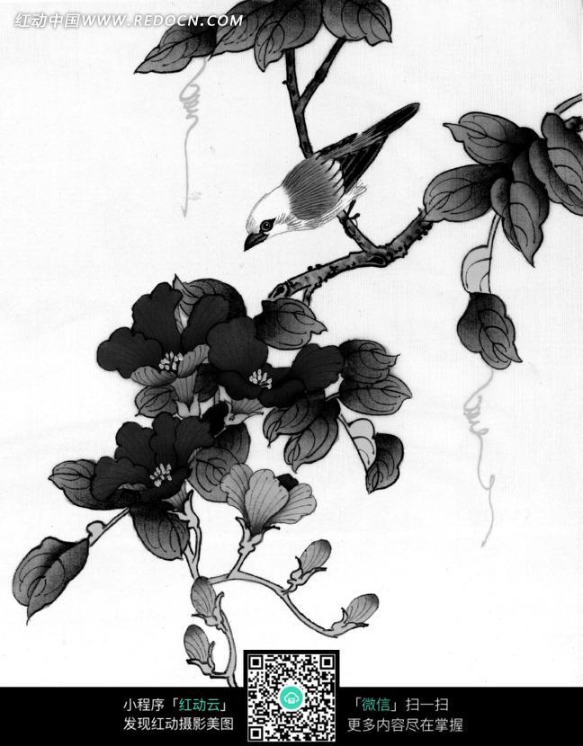 工笔画之树枝上的小鸟和盛开的花朵图片