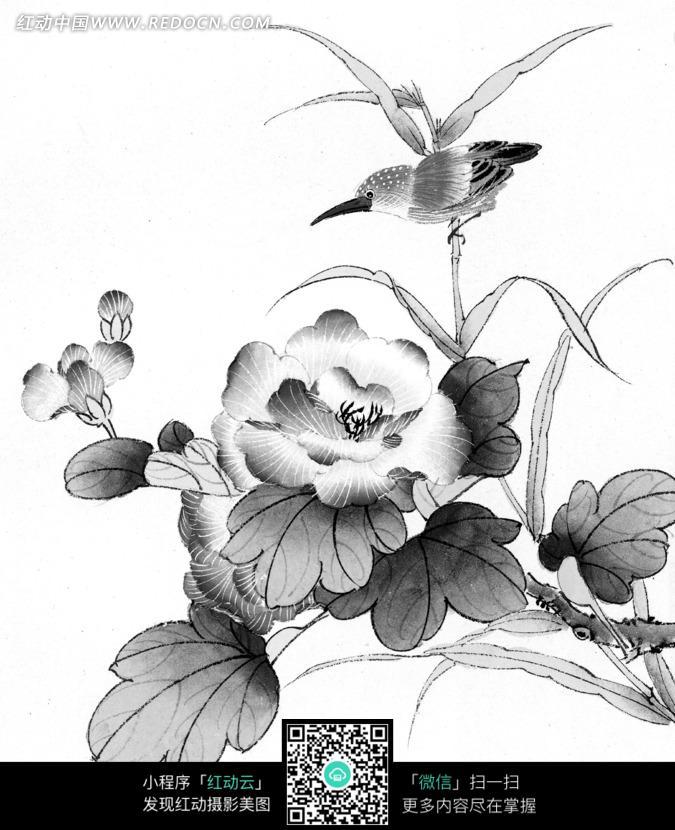 工笔画之盛开的花朵和可爱的鸟图片