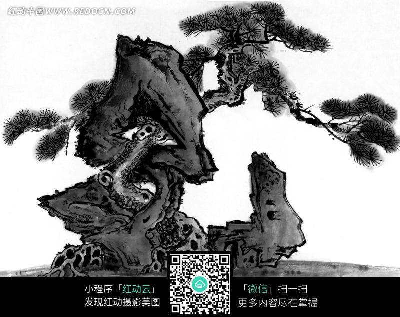 一棵青松枯树水墨画图片