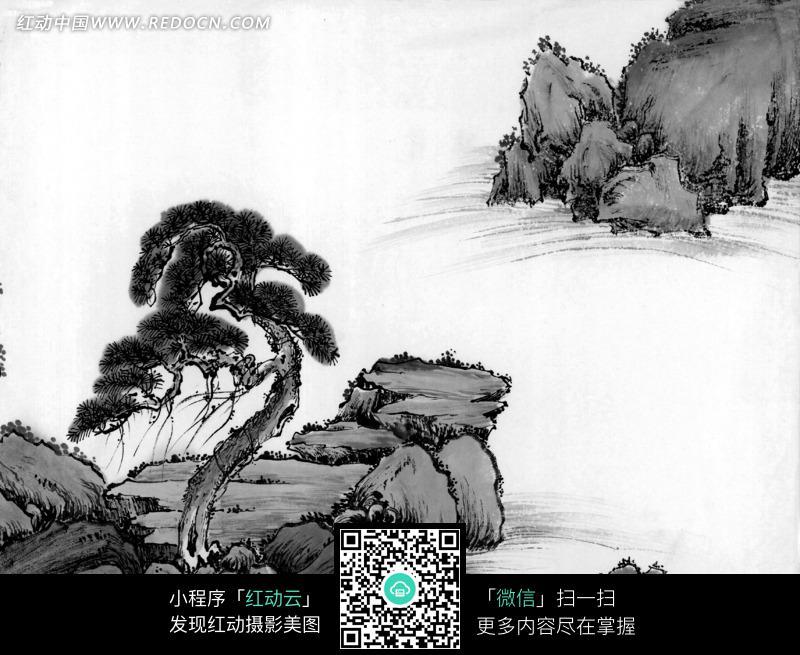 水墨画之水边石头上的古松图片
