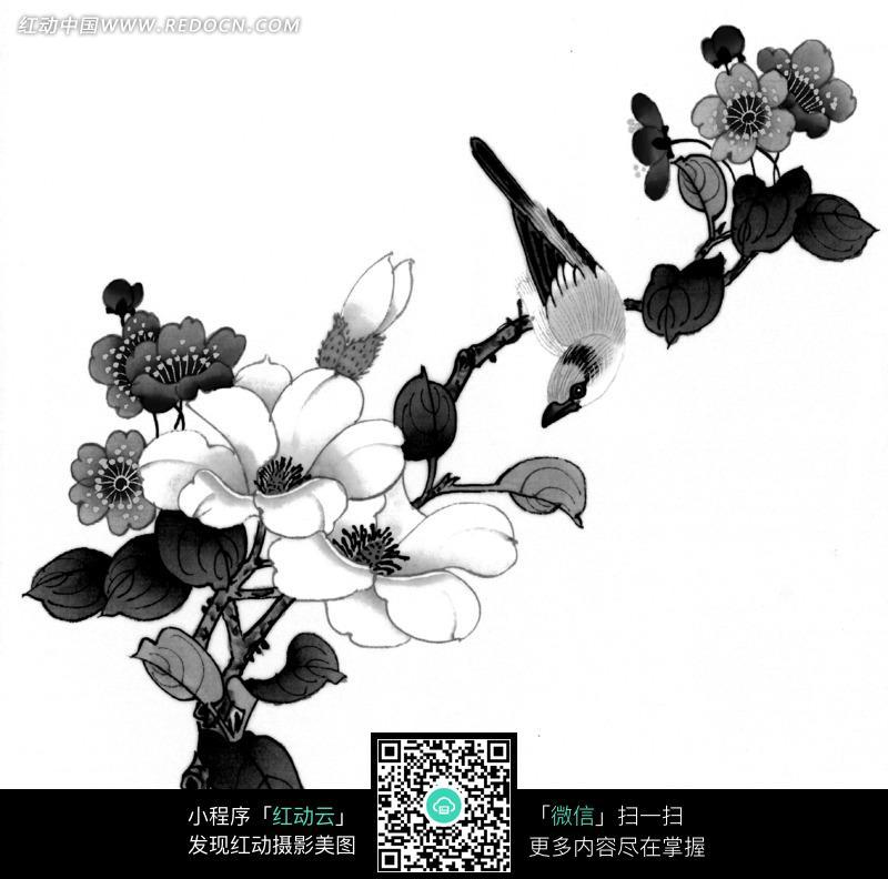 工笔画—枝头的鸟和盛开的花朵