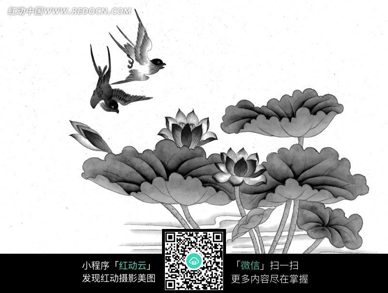 工笔画之荷花上方的燕子图片免费下载 红动网