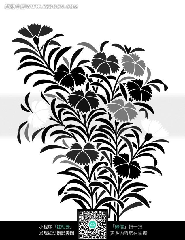 手绘花瓶彩色花朵花卉插 手绘美丽的花朵花卉插画 手绘美丽的黑白植物