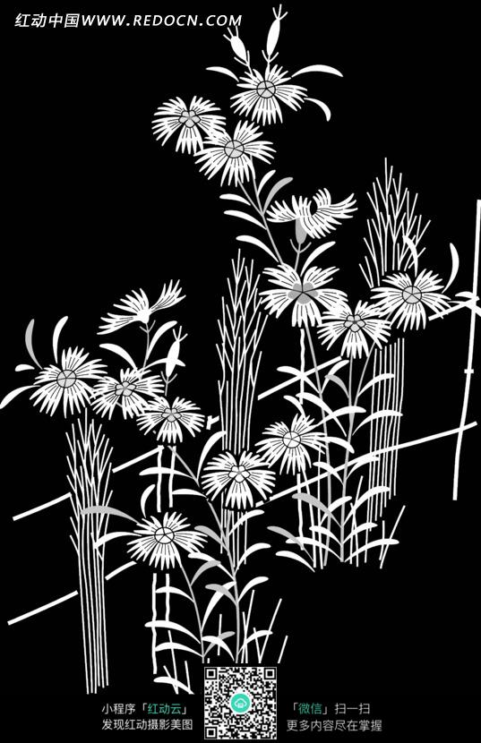 手绘植物花朵花卉剪影