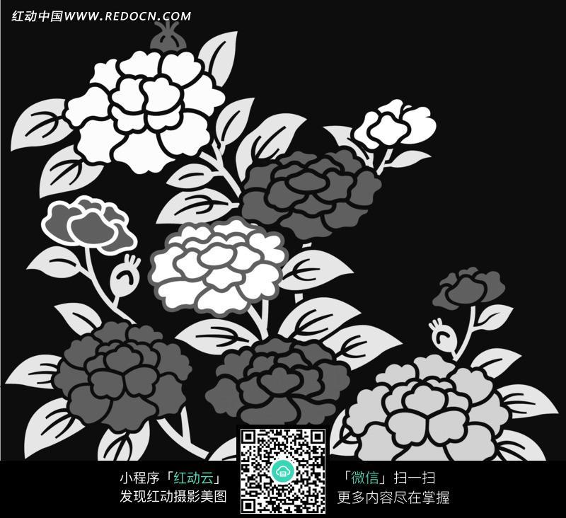 手绘藤蔓缠绕盛放牡丹横幅