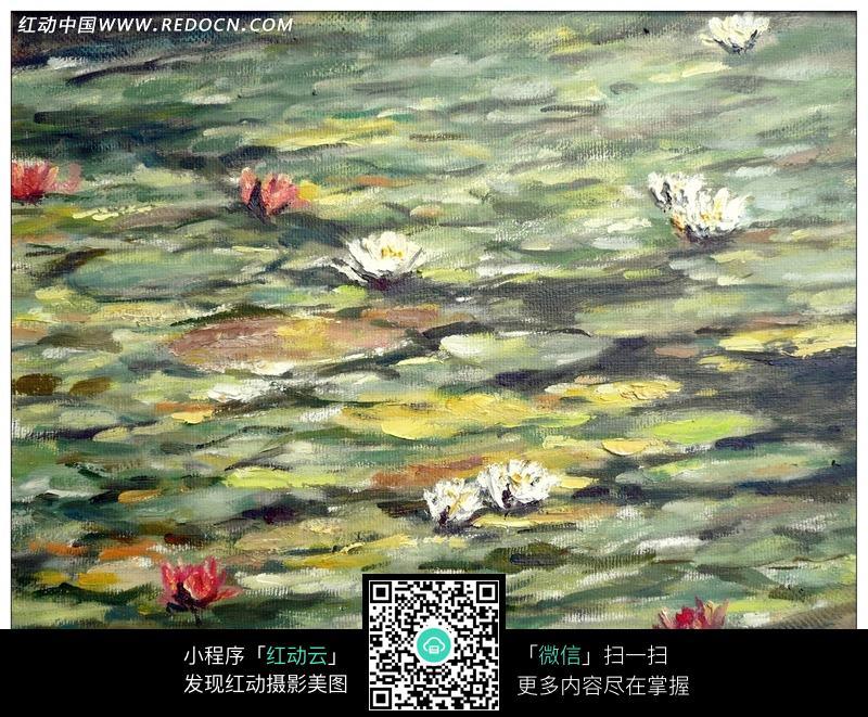 长满荷叶和荷花的水面油画图片