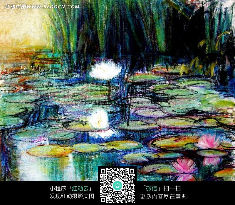 水面的荷花和荷叶油画图片