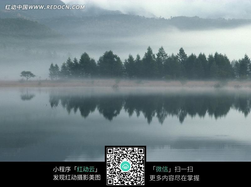 雾气笼罩下倒映着河边树木的湖面