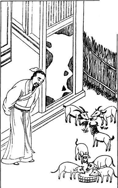 古代男子 吃饭 猪 插画