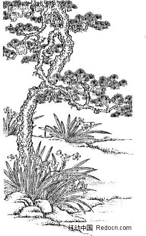 简笔画树的画法-中国古典图案 苍劲的松树和兰花 矢量花纹 矢量花边素