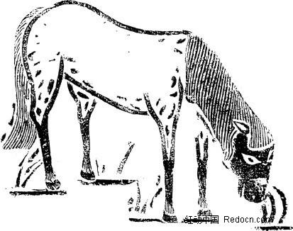 手绘 低头吃草 马 图案