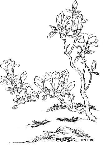 矢量手绘植物花草线条插画
