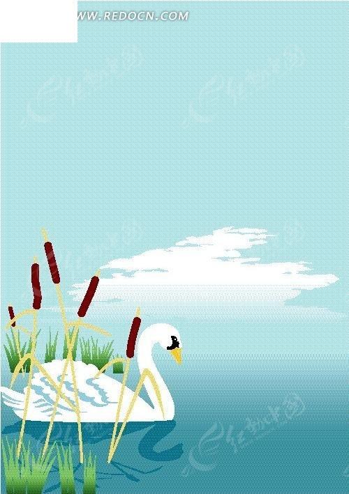 水面上的白天鹅矢量图