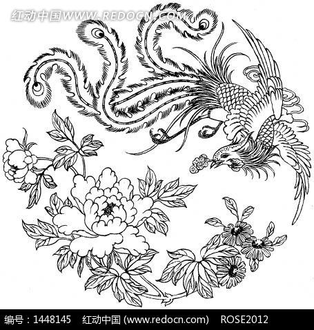 中国传统吉祥牡丹花凤凰图
