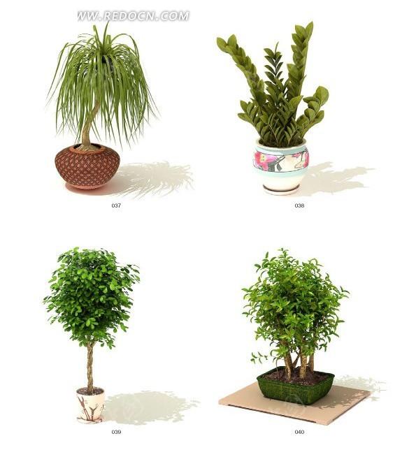 四款室内绿色盆栽3dmax免费下载_动物植物素材_编号