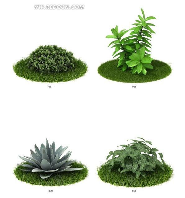 四种园林绿化植物3d模型图