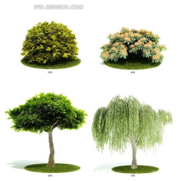 四种园林植物灌木花卉3d模型