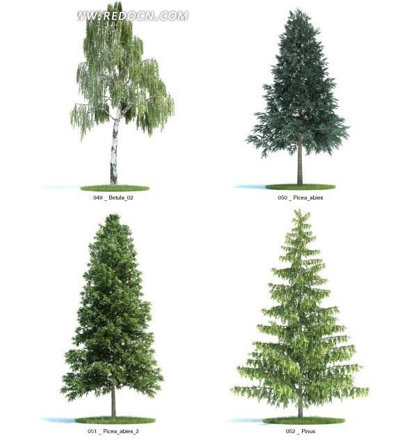 3d三角形树木模型图片