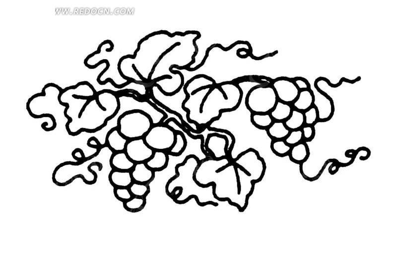 中国古典图案-葡萄藤蔓上的葡萄和叶子矢量图_传统图案;