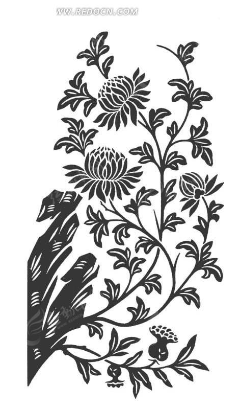 手绘石头边生长的菊花